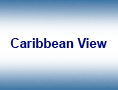 The Caribbean View